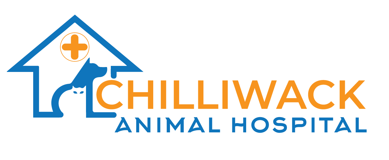 Chilliwack Animal Hospital